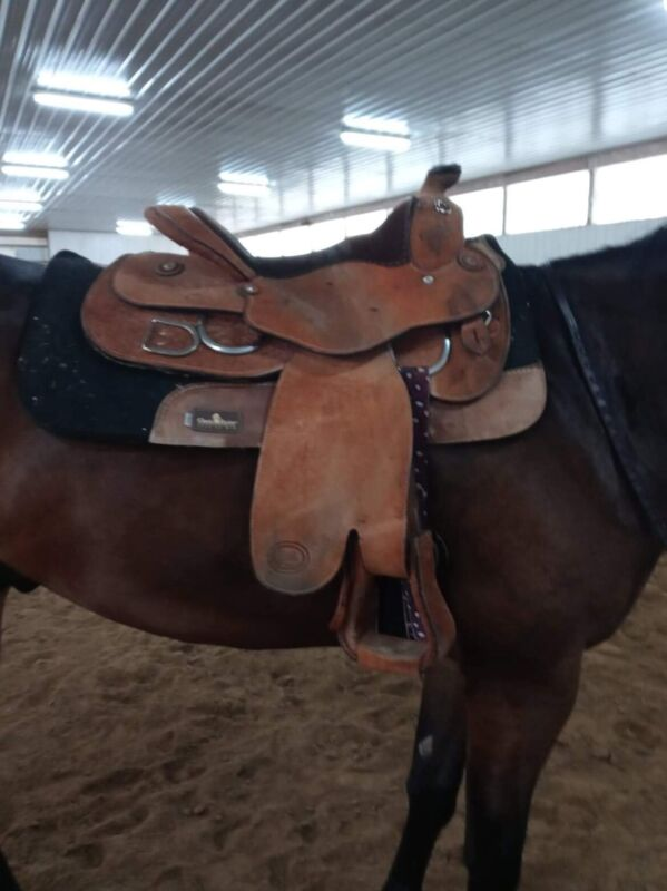 Billy Royal  Pro Western Training Saddle