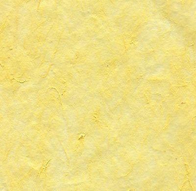Scrapbook Paper 12x12 M-09 Light Yellow Mulberry Handmade Cre8apage 10 Sheet -