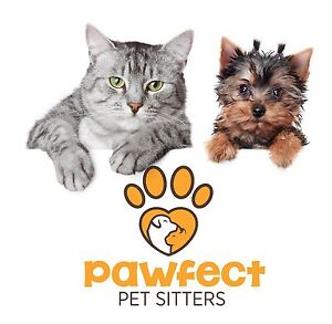 Pawfect Pet Sitting Perth Tuart Hill Stirling Area Preview