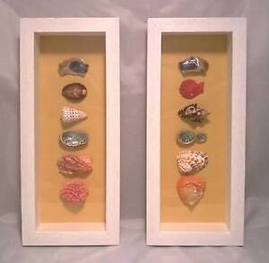New Pair of Sea Shell Feature Frames; Sailors Valentine; Gift Mudgeeraba Gold Coast South Preview