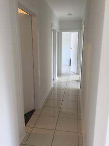 Immaculate newly renovated, minutes walk to Flinders University Bedford Park Mitcham Area Preview