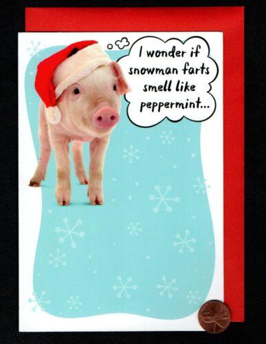 CHRISTMAS Pig Santa Hat - HUMOROUS - Greeting Card - NEW w/ Tracking