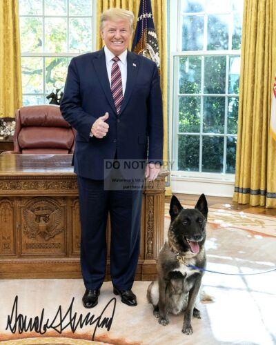 "DONALD TRUMP WITH ""CONAN"" THE MILITARY WORKING DOG - 8X10 PHOTO (RP-023)"