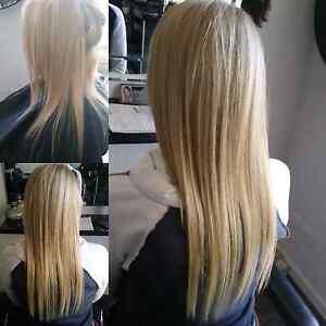 Hair extensions clip in hobart region tas gumtree australia clip in human hair extensions 100 pmusecretfo Images