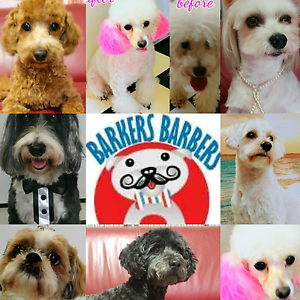 Barkers Barbers - Dog Grooming Shop Griffin Pine Rivers Area Preview