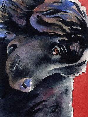 NEWFOUNDLAND Dog Painting ART 11 X 14 LARGE Signed DJR