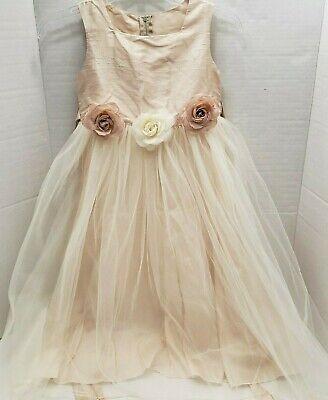 Dream Kids Dress Flower Girl Tulle Cream Ballet Rose Pink Silk Fairy Party 7 8