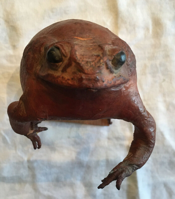 "Vintage Taxidermy Genuine Leather Frog Standing 8"" Tall"