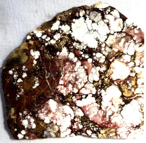 Thick Wild Horse Magnesite Slab - 335 Grams - Arizona - WildHorse