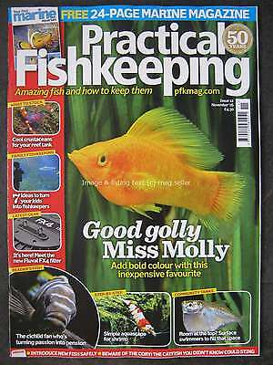 Practical Fishkeeping November 2016 Molly Rift Valley Cichlid Crustaceans Marine