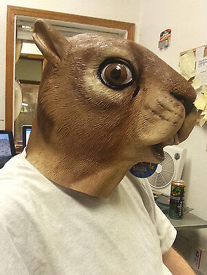 Squirrel Mask (Squirrel Mask - New in package - Dress up Adult size Mask - Cute)