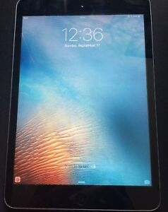 Ipad mini 2 (16 gb)