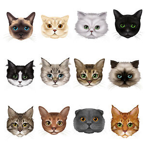 12-Cute-Cat-Face-Window-Clings-Non-adhesive-Stickers-Reusable-Glass-Decorations