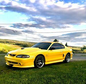 Mustang gt cobra