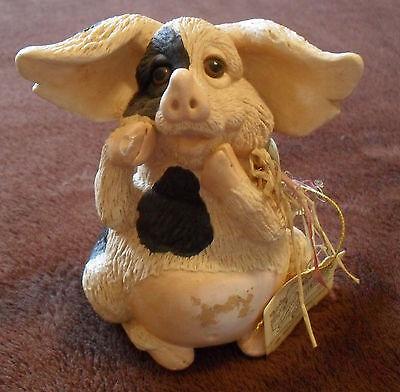 Rarität: geflecktes Schwein mit Riesenohren, aus USA, Schweine, Sau, Ferkel, 3