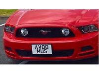Private Mustang V8 registration number plate