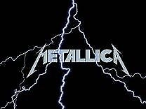 Metallica concert buddy friends sought