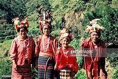 Tribal-Trader