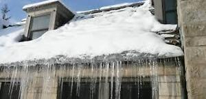 ROOF TOP ICE AND SNOW REMOVAL Peterborough Peterborough Area image 2