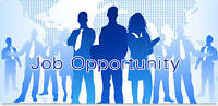 Hungry For A Great Opportunity? $$$