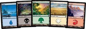 Magic the gathering Basic Land