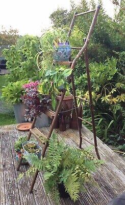 Traditional Vintage Metal Step-Ladder, Display Plant Stand