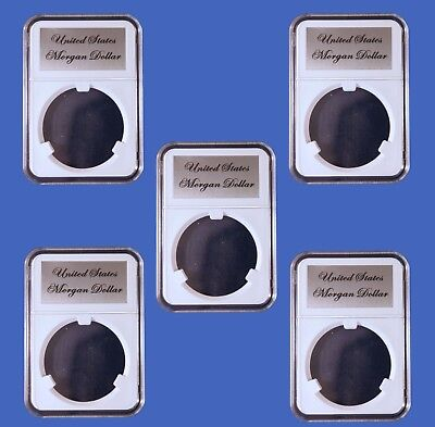 25 Little Bear Elite Certified-Style Coin Holder Your Choice