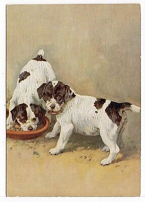 SMOOTH FOX TERRIER 1930'S DE RESZKE OUR PUPPIES DOG ART POSTCARD CIGARETTE CARD