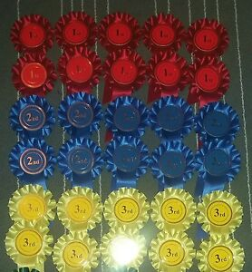 1st To 3rd X10 30 Rosettes Dog Show Horse Event