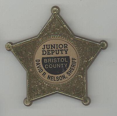 DAVID NELSON Sheriff MASSACHUSETTS Political PINBACK Pin BUTTON Badge BRISTOL CO