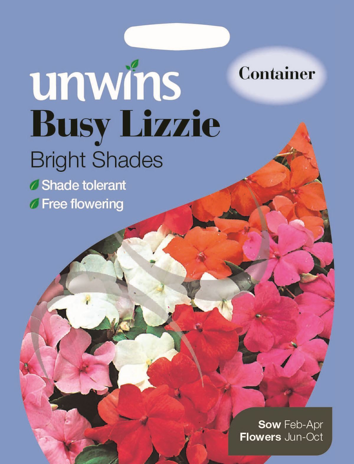 Busy Lizzie Bright Shades Unwins Pictorial Packet Flower 50 Seeds