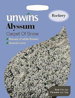 Unwins Pictorial Packet - Flower - Alyssum