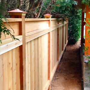 Fence and Deck builder. Carpenter