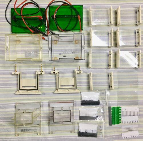 Bio-Rad Mini Protean II Complete Systems PAGE
