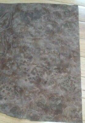 Walnut Burl Wood Veneer 8 12 X 12 Buckled
