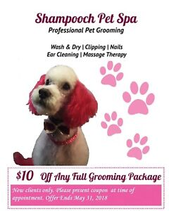 Dogs find or advertise pet animal services in guelph kijiji dog grooming solutioingenieria Images