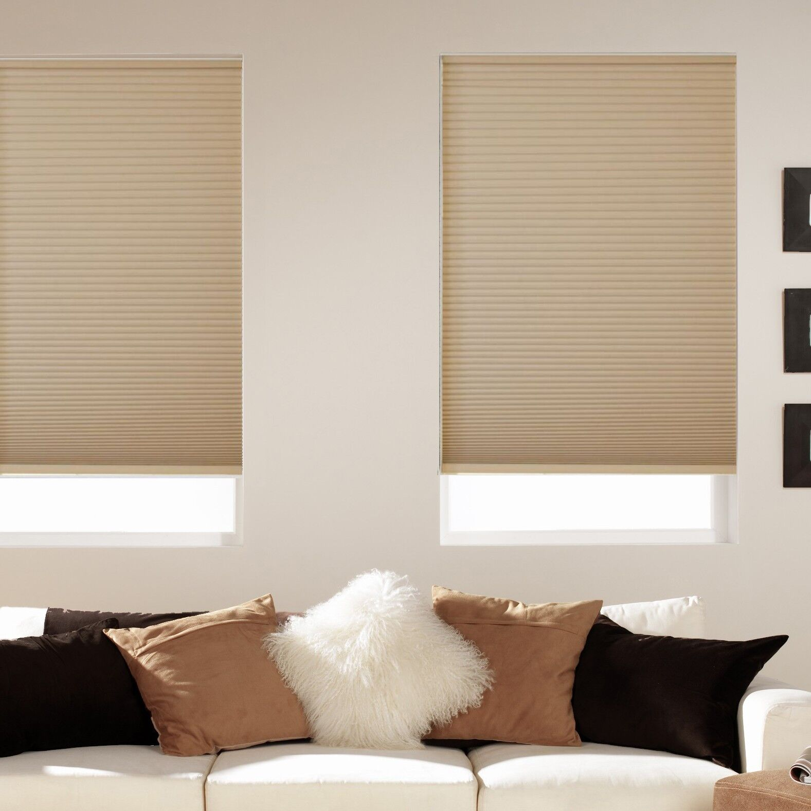 Room Darkening Cordless Cellular Shades - Five Colors - Free