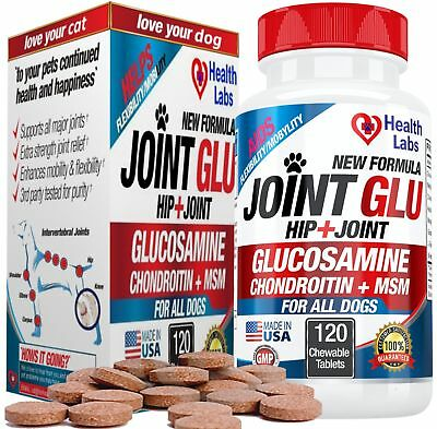 Best Strength Glucosamine Chondroitin for Dogs to Extend Hip and Joint Care