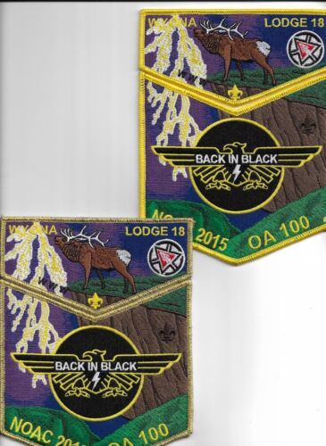 noac 2015 wyona lodge 18 2-- 2 piece set one Reg the other gold mylar delegate