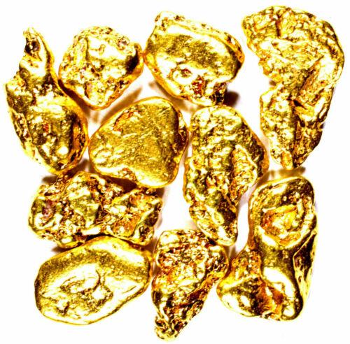 20 PIECE LOT ALASKAN YUKON BC NATURAL PURE GOLD NUGGETS FREE SHIPPING (#L250)