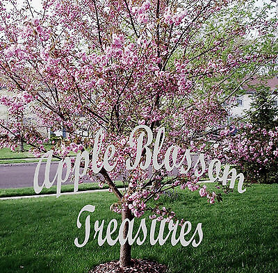 Apple Blossom Treasures