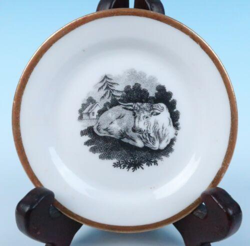 c.1815 Ridgway Bat Print w/ Cow Butter Pat Antique English Porcelain 19thC. Farm