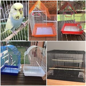 Female budgie $25: Brand new cages $25-$40 Kellyville The Hills District Preview