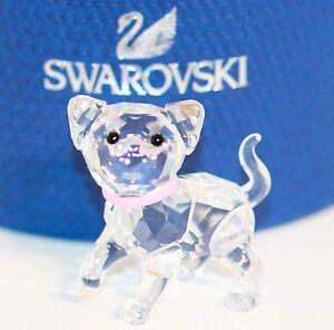 Swarovski Figur Katze Kätzchen stehend Nr.1193537 mit Original Verpackung