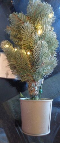 """Pottery Barn Christmas Lit Faux blue spruce bucket tree small 14"""" New wo tag"""