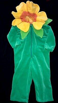 baby girls HALLOWEEN COSTUME SUN FLOWER JUMPSUIT HOOD 12/24 month SUPER COND! (24 Month Baby Halloween Costumes)
