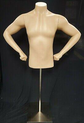 Headless Male 12 Torso Fiberglass Mannequin Warms Hands W Metal Stand Nib