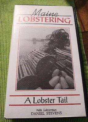 Maine Lobstering A Lobster Tail Daniel Stevens for sale  Sicklerville