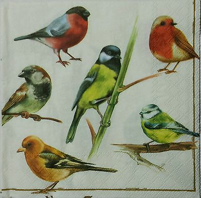 BIRDS 2 individual LUNCH SIZE paper napkins for decoupage 3-ply