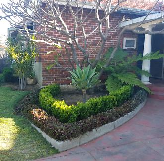 Plant/Garden sale  Oct